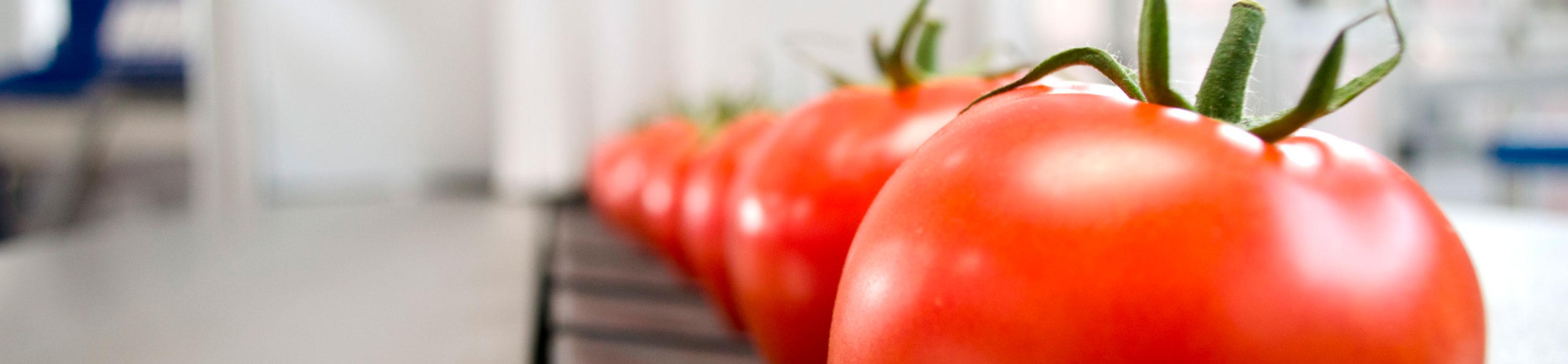 coronavirus en industrias agroalimentarias alimentos
